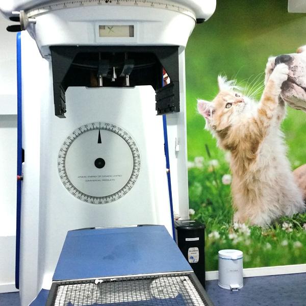 CRV-Radioterapia-Megavoltagem-Corpo-02