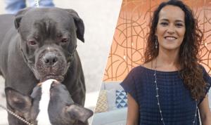 Comportamento Animal, com Dra Rita Ericson